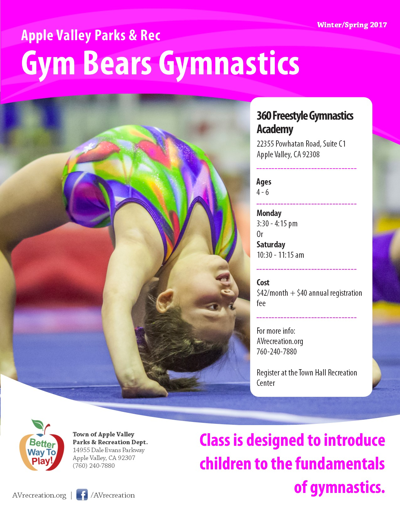 Gym Bears Gymnastics