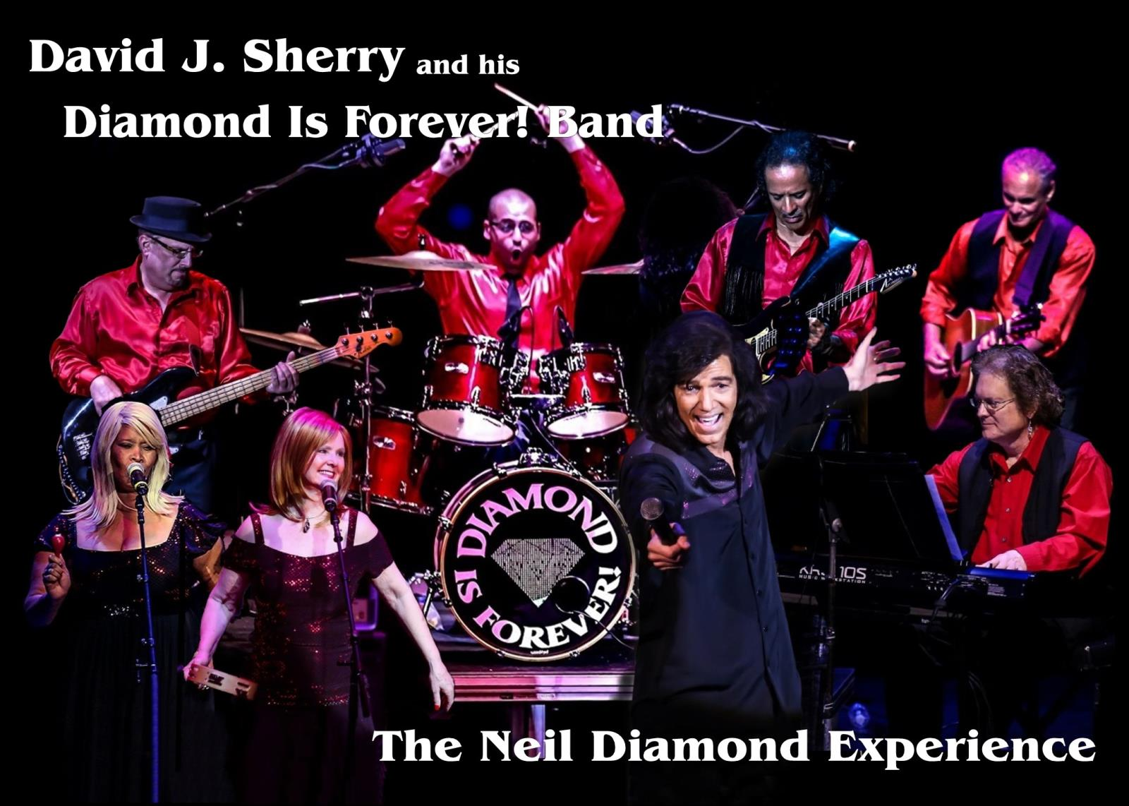 Diamond is Forever Band