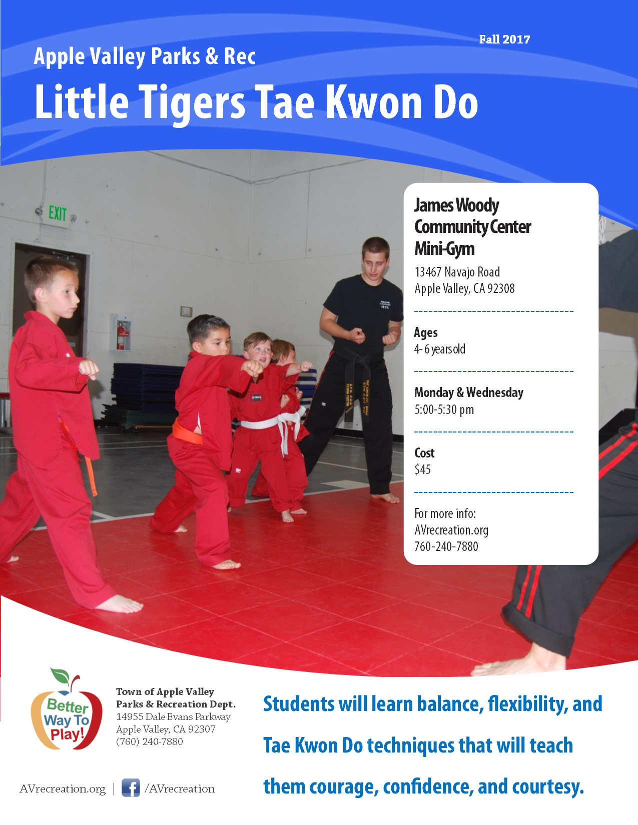 Little TIger Tae Kwon Do