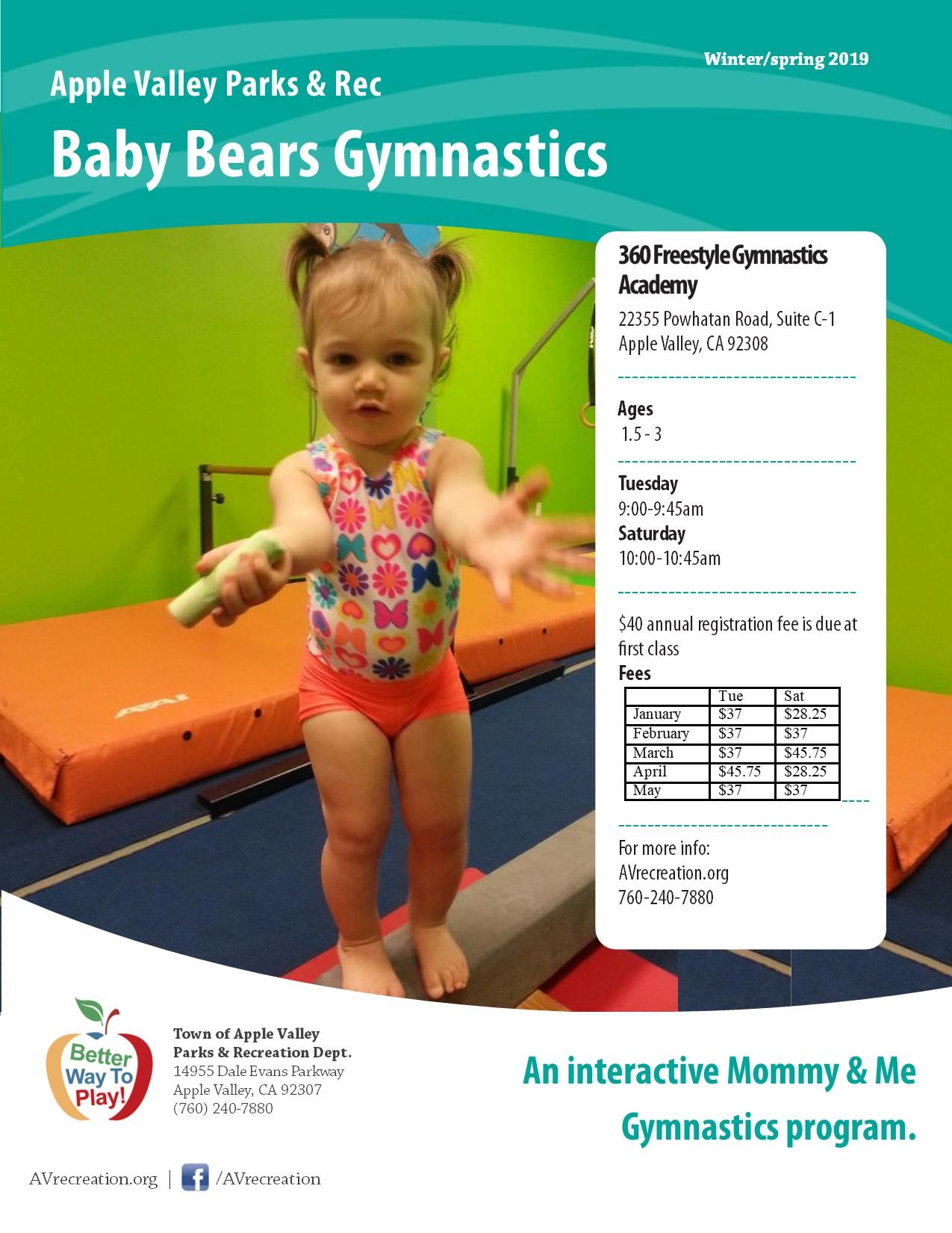 Baby Bears Gymnastics